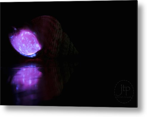 Shell Metal Print featuring the photograph Shell Glow by JT Photography