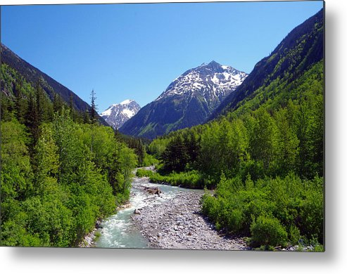 Railroad Metal Print featuring the photograph Skagway 5 by Harvey Dalley