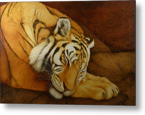 Tiger Metal Print featuring the painting Sleeping Tiger by Norm Holmberg
