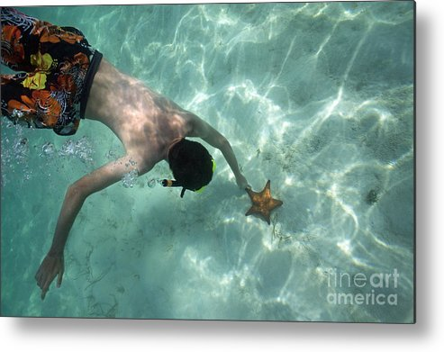 People Metal Print featuring the photograph Snorkeller Touching Starfish On Seabed by Sami Sarkis
