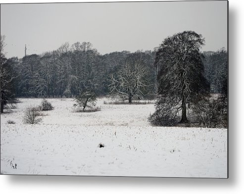 Winter Metal Print featuring the photograph Snow In Lincolnshire by Tim Senior