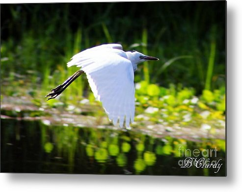 Lake Metal Print featuring the photograph Some Where To Go by Bridget Clardy