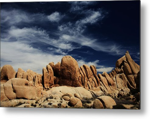 Joshua Tree National Park Metal Print featuring the photograph Songs Of Misery by Laurie Search