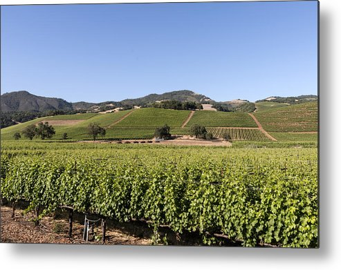 Sonoma Metal Print featuring the photograph Sonoma County Vineyards by Carol M Highsmith