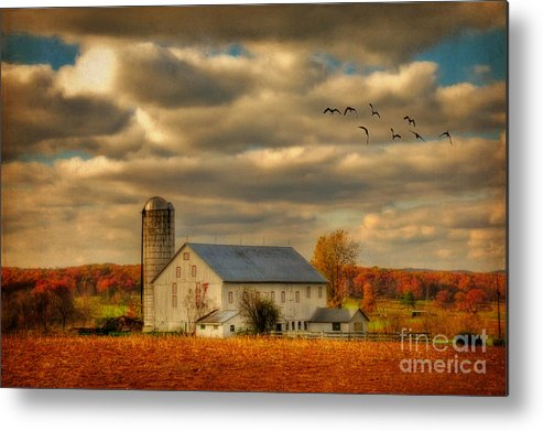 White Barn Metal Print featuring the photograph South For The Winter by Lois Bryan