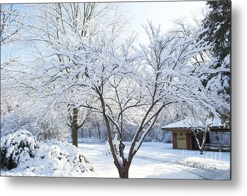 South Park Wonderland Metal Print featuring the photograph Snow - South Park Wonderland - Luther Fine Art by Luther Fine Art