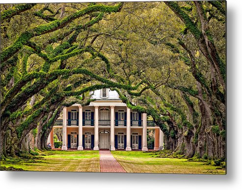Oak Alley Plantation Metal Print featuring the photograph Southern Class by Steve Harrington