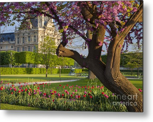 Architecture Metal Print featuring the photograph Spring In Paris by Brian Jannsen