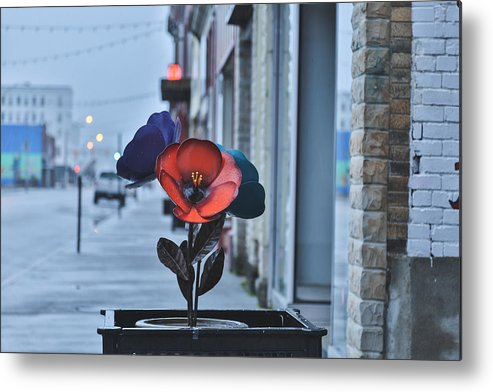 Princeton Wv Metal Print featuring the photograph Steel Blooms by Jimmy McDonald