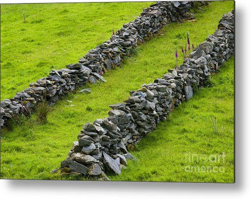 County Donegal Metal Print featuring the photograph Stone Fences In Ireland by John Shaw