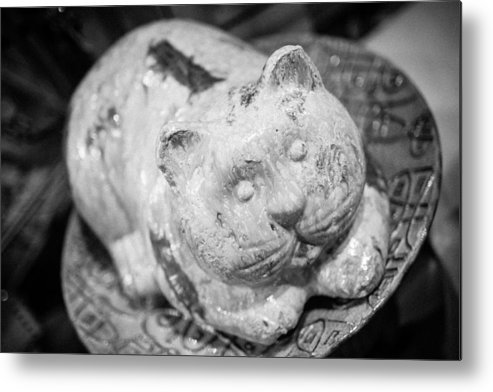 Seattle Metal Print featuring the photograph Stone Kitty by Paul Bartoszek