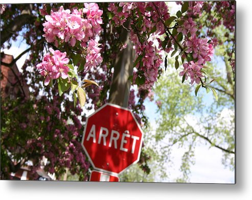 Montreal Metal Print featuring the photograph Stop To Smell The Flowers by Frederico Borges