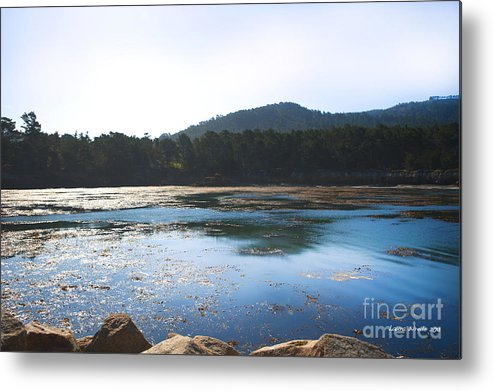 State Beach Near Big Sur Metal Print featuring the photograph Sunrise Over Whaler's Cove At Point Lobos California by Artist and Photographer Laura Wrede