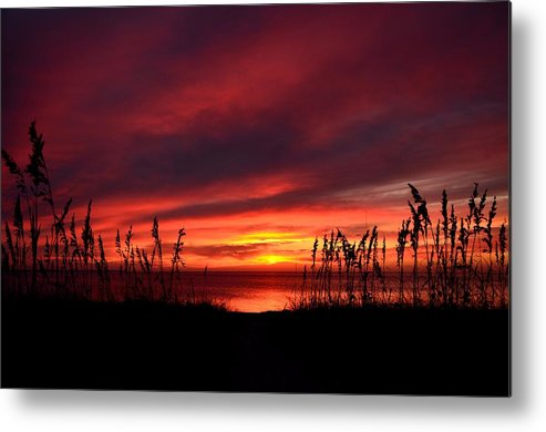 Sunset Metal Print featuring the photograph Sunset Through The Sea Oats by Ken Claussen