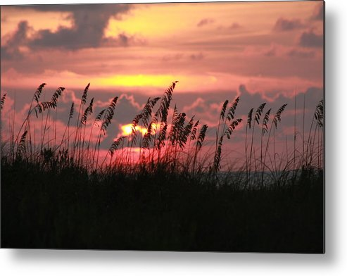 Sunset Metal Print featuring the photograph Sunset With Sea Oats by Shari Bailey
