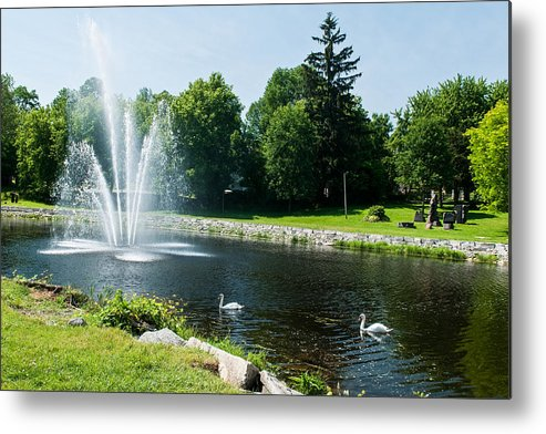 Swans Metal Print featuring the photograph Swans With A Fountain by Nicole Couture-Lord