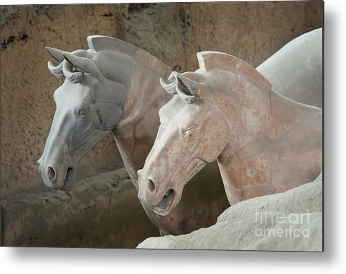 Archeology Metal Print featuring the photograph Terracotta Warrior Horses, China by John Shaw