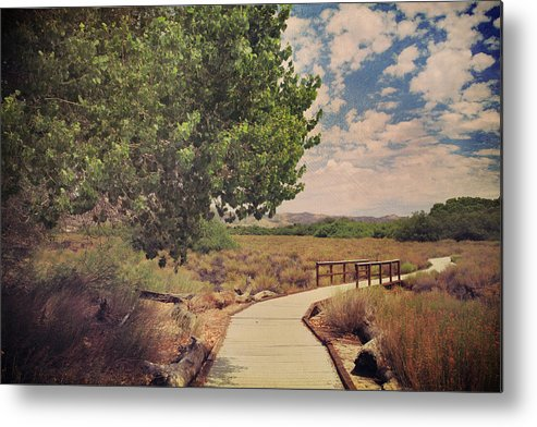 Big Morongo Canyon Preserve Metal Print featuring the photograph That Helping Hand by Laurie Search