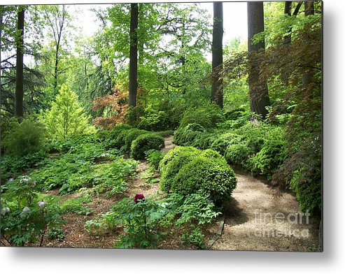 Paths Metal Print featuring the photograph Asian Paths No. 15 by Walter Oliver Neal