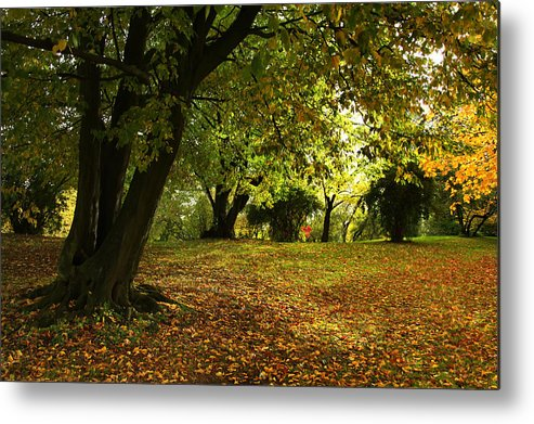 Annie Snel Metal Print featuring the photograph The Beauty Of Autumn by Annie Snel