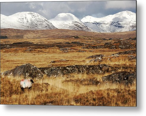Ireland Metal Print featuring the photograph The Bog Road by Linda Mc Nulty