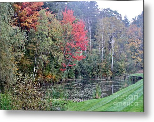 Fall Metal Print featuring the photograph The Change by Butch Phillips