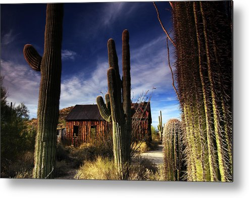 Vulture Peak Mine Metal Print featuring the photograph The Ghost Schoolhouse by Kenan Sipilovic