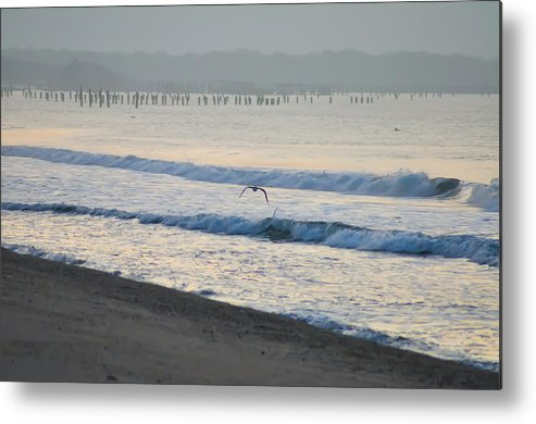 Jersey Metal Print featuring the photograph The Jersey Surf by Bill Cannon
