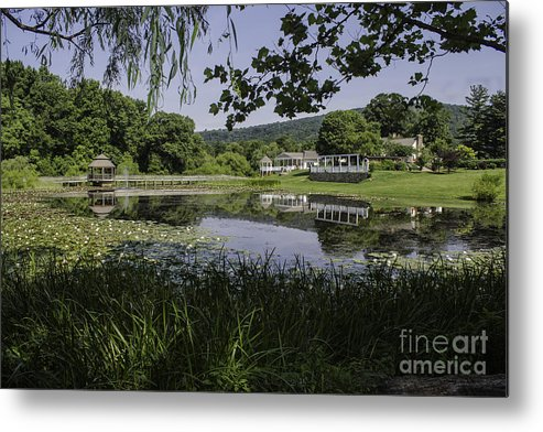 Landscape Metal Print featuring the photograph The Lily Pond by Arlene Carmel