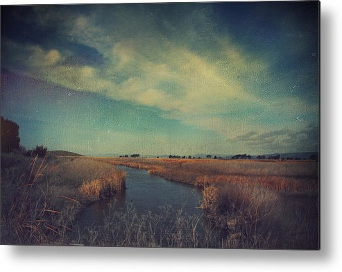 Landscapes Metal Print featuring the photograph The Love We Give by Laurie Search