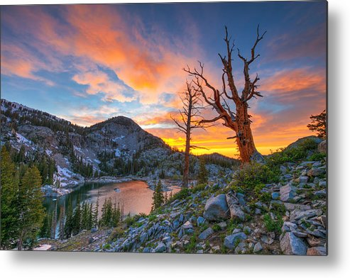 Utah Metal Print featuring the photograph The Sentinel by Dustin LeFevre