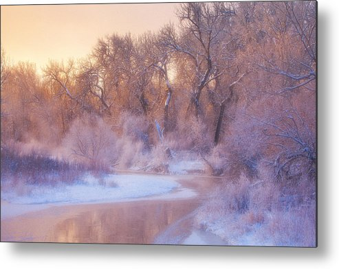 Ice Metal Print featuring the photograph The Warmth Of Winter by Darren White