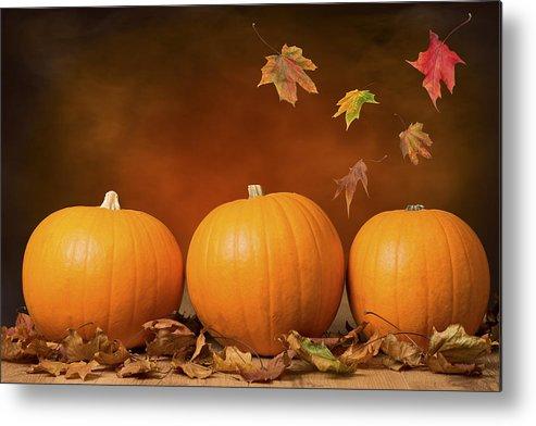 Pumpkin Metal Print featuring the photograph Three Pumpkins by Amanda Elwell