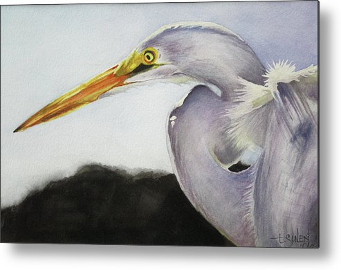 Florida Birds Metal Print featuring the painting Today's Special by Lorraine Ulen