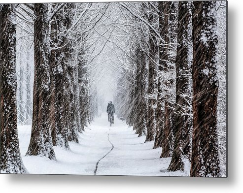 Snow Metal Print featuring the photograph Trace by Tiger Seo