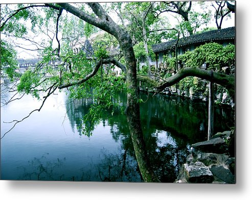 Tree Landscape Metal Print featuring the photograph Tree by HweeYen Ong
