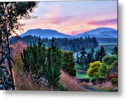 Flowers Metal Print featuring the digital art Vancouver Island Evening by Georgianne Giese
