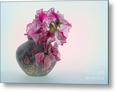Sweet Peas Metal Print featuring the photograph Vase Of Pretty Pink Sweet Peas 2 by Ann Garrett
