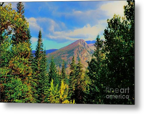 Blue Metal Print featuring the photograph View by Kathleen Struckle
