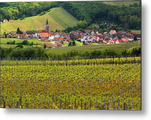 Vineyards Metal Print featuring the photograph View Of Rodern From The Vineyards Of Alsace by Greg Matchick