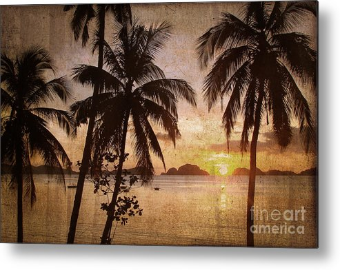 Palm Trees Metal Print featuring the photograph Vintage Philippines by Delphimages Photo Creations