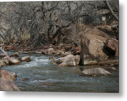 River Metal Print featuring the photograph Virgin River Zion Park by Horst Duesterwald