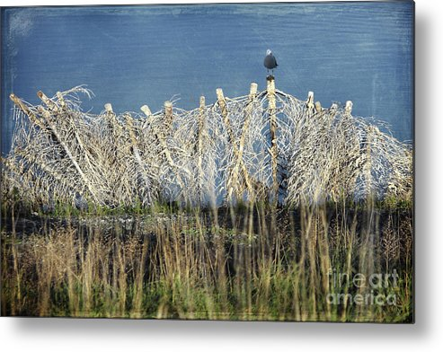 Landscapes Metal Print featuring the photograph Waiting For You by Ellen Cotton