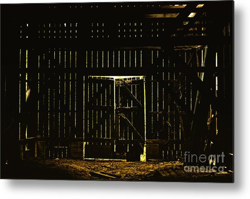 Barn Metal Print featuring the photograph Walking Dead by Andrew Paranavitana