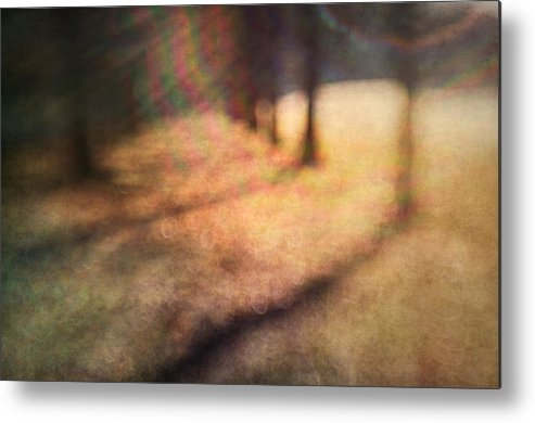 Blur Metal Print featuring the photograph Warner Park Sunrise by David Morel