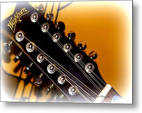 12 Metal Print featuring the photograph Washburn 12 String by Travis Truelove
