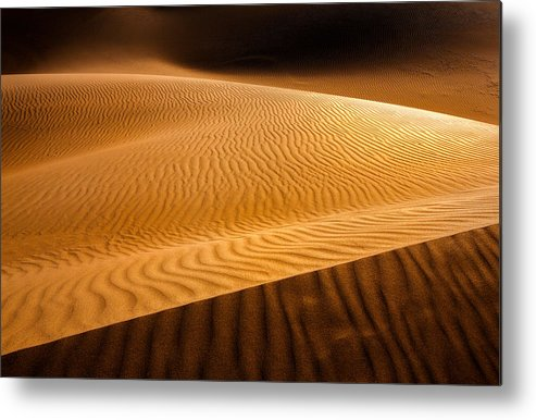 Wavy Panel Metal Print featuring the photograph Wavy Panel by Niloufar Hoseinzadeh