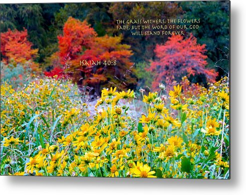 God Metal Print featuring the photograph What He Inspires Never Fades by David Norman