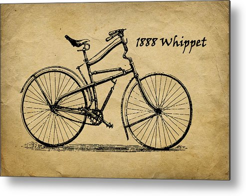 Whippet Metal Print featuring the photograph Whippet Bicycle by Tom Mc Nemar