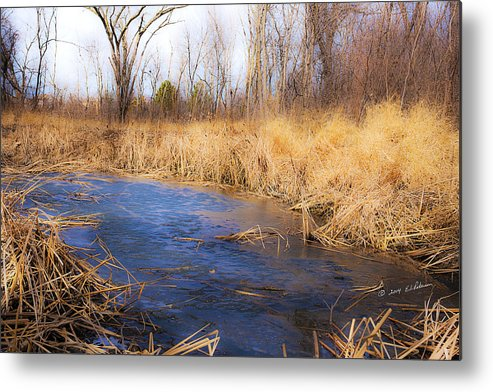 Spring Metal Print featuring the photograph Winter Fade by Edward Peterson